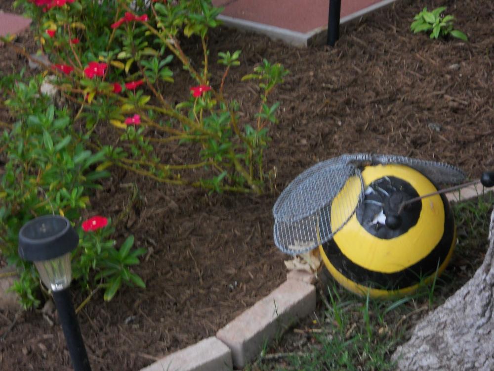 A Bumblebee Bowling Ball (2/2)