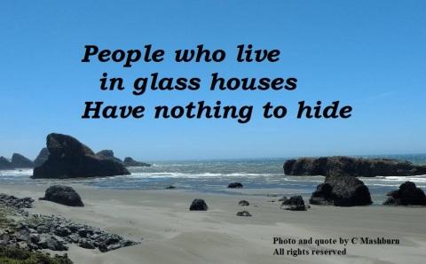 beach (2) quote