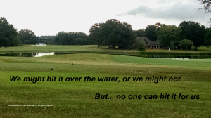 Water hole #11
