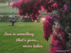 Love is never taken (2)