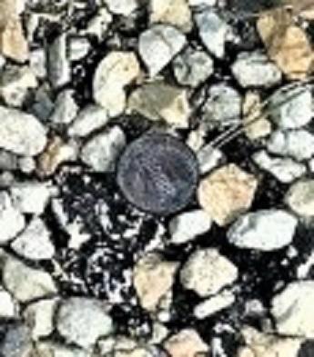 a pennie (3)