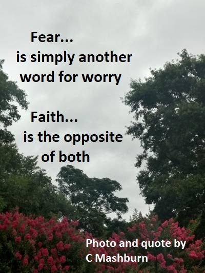 another word for worry