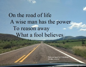 A wise man has the power