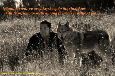 MAN AND WOLF ~ quote