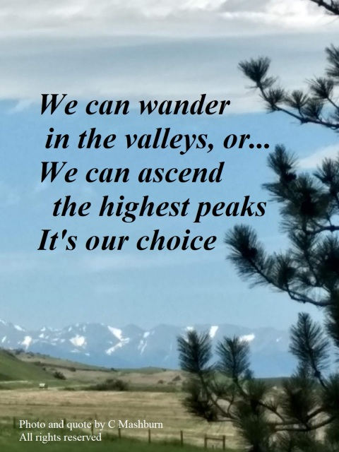 mountains and valley quote 2