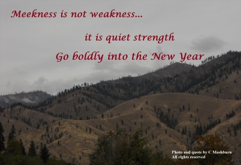 meekness (2) quote