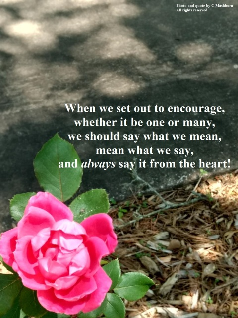 Easter rose quote