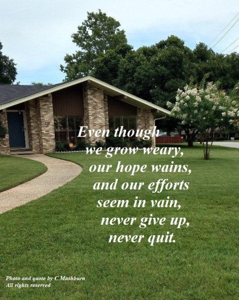 House & Yard June 1 2019 (3) quote