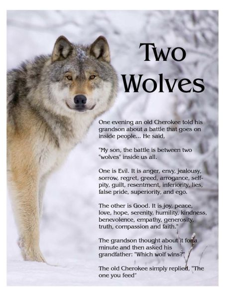 The+legend+of+the+two+wolves